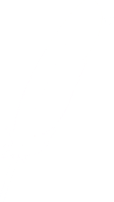 CopyrightNotice/feather-small-w.png